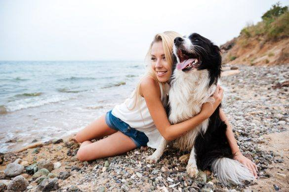 Dog Beaches | Dog-Friendly Beaches | Melbourne | The Daily Fluff | Melbourne Pet Blog